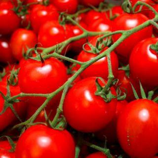 Италиански Зеленчуци
