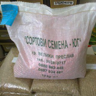 5кг-Семена царевица КНЕЖА 509