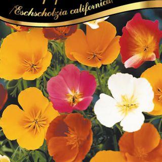 Калифорнийски мак /Eschscholzia californica /