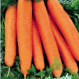 Моркови Нантски-около 2500 сем.