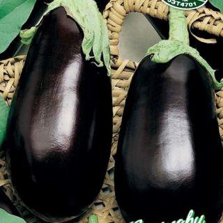 Патладжан-Черна красавица-2гр.