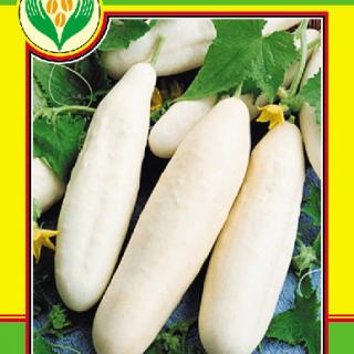 Краставици Бяло чудо-1гр.