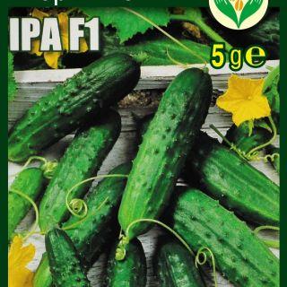 Краставици ИРА F1 - 5гр.
