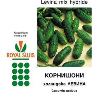 Краставици Levina mix F1- 50гр.