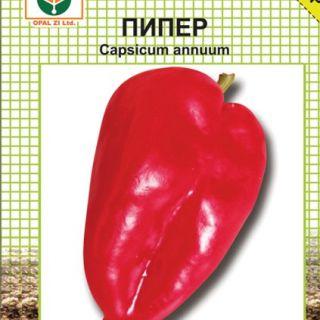 Пипер-АМФОРА