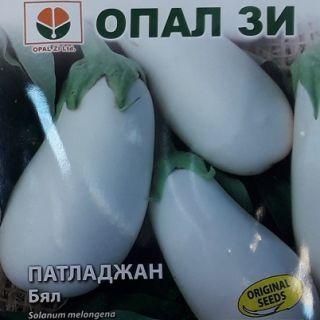 Патладжан бял